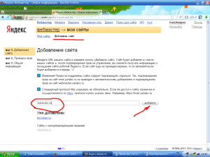 Подтверждение_прав_на_сайт_2