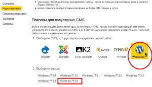 Yandex_PDS_10