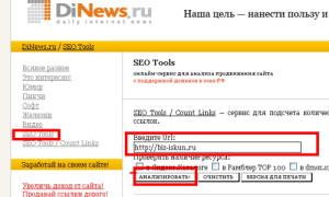 Yandex_PDS_13