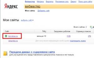 Яндекс Webmaster5