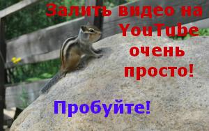 Залить_видео