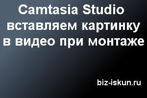 Картинка в видео Camtasia