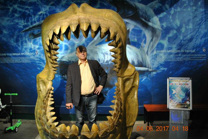 Челюсти древней акулы, океанариум в питере