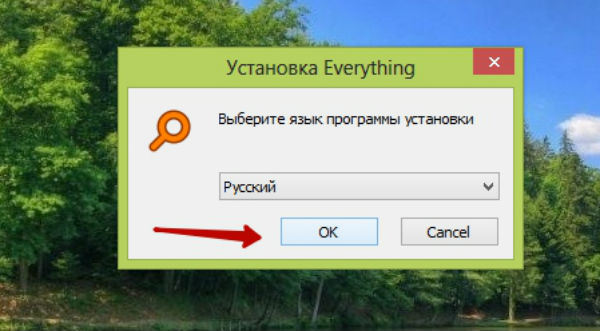 Установка программы Everything