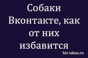 Собаки Вконтакте