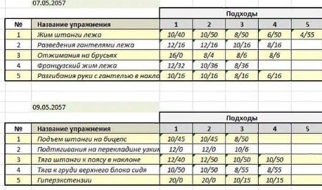 план тренировок в тренажерном зале